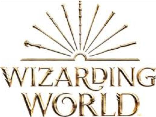 Wizarding Logo
